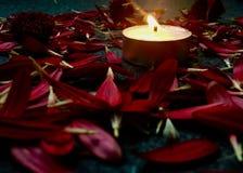 Kwiat i świeczka obraz royalty free