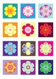 kwiat ikona Zdjęcie Stock