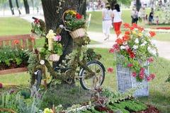 Kwiat instalacja z bicyklem Zdjęcie Royalty Free