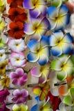 Kwiat klamerka Obraz Royalty Free