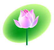 kwiat lotos royalty ilustracja