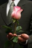 kwiat miłości Zdjęcia Stock