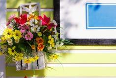 Kwiat na ścianie Zdjęcia Stock