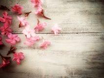kwiat na drewnianym w miękkiej ostrości z rocznika brzmieniem Fotografia Stock