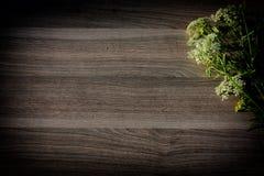 kwiat na drewnie Zdjęcia Stock