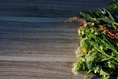 kwiat na drewnie Zdjęcia Royalty Free