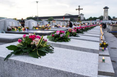 Kwiat na gravestone w dniu pamięci Zdjęcie Royalty Free
