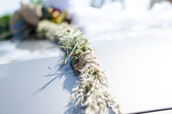Kwiat na samochodzie Fotografia Stock