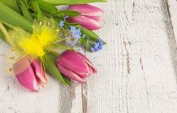 Kwiat niezapominajka i tulipany Zdjęcia Stock
