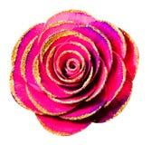 Kwiat odizolowywający na białym tle Sztucznego kwiatu rodzaj dalej Fotografia Royalty Free