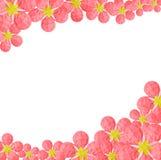 Kwiat papierowa rama Obraz Royalty Free
