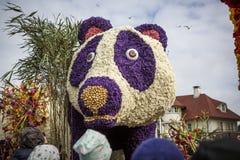 Kwiat parada w holandiach przy wiosną Obrazy Stock