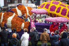 Kwiat parada w holandiach przy wiosną Zdjęcia Stock