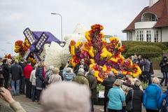 Kwiat parada w holandiach przy wiosną Obrazy Royalty Free