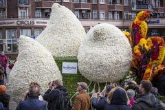 Kwiat parada w holandiach przy wiosną Obraz Stock