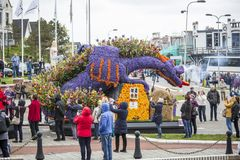 Kwiat parada w holandiach przy wiosną Zdjęcia Royalty Free