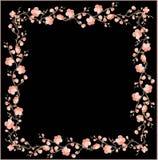 kwiat piękna dekoracyjna struktura wita Fotografia Royalty Free