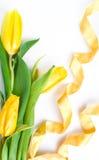 kwiat piękna wiosna Obraz Royalty Free