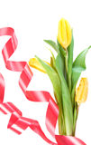 kwiat piękna wiosna Obrazy Royalty Free
