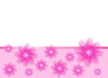 kwiat piękne karciane menchie Zdjęcia Stock