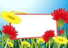 kwiat pola rama ilustracja wektor