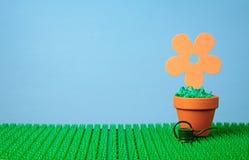 Kwiat puszkujący w glinianym garnku obraz royalty free