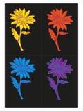 2 kwiat różni kolory ilustracja wektor