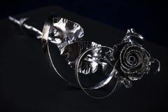 Kwiat róża srebrzysty kolor Fotografia Royalty Free