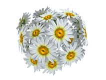 Kwiat sfera obraz royalty free