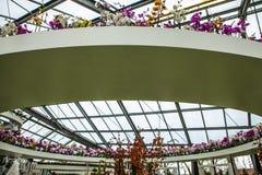 Kwiat szklarnia, florystyczny wystrojów elementów zakończenie Keukenhof jest światu kwiatu wielkim ogródem Obraz Royalty Free