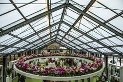Kwiat szklarnia, florystyczny wystrojów elementów zakończenie Keukenhof jest world& x27; s kwiatu wielki ogród Obrazy Stock
