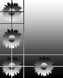kwiat tło ilustracji
