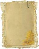 kwiat tekstury stare papierowe ilustracja wektor