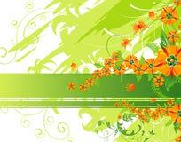 kwiat tło Zdjęcie Royalty Free