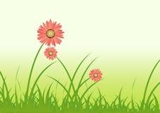 kwiat trawy. ilustracja wektor
