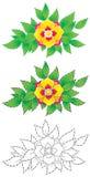 kwiat tropikalny Zdjęcie Stock