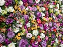 Kwiat władza Zdjęcie Royalty Free