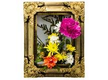 Kwiat W ramie Obraz Royalty Free