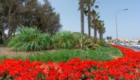 Kwiat?w ronda w Malta i przygotowania obrazy stock