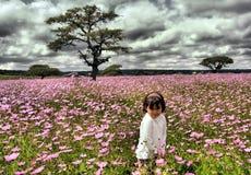 kwiat w terenie Fotografia Stock