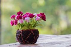 Kwiat w wazie z zielonym bokeh Fotografia Royalty Free