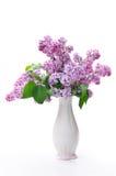 kwiat waza Obraz Royalty Free