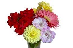 Kwiat waza Zdjęcia Stock