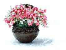 kwiat waza Zdjęcie Stock