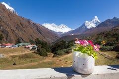 Kwiat waza w frontowym Ama Dablam halnym szczycie Nepal Obraz Royalty Free