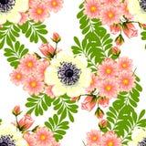 kwiat wiśni tła kwitnie niebo białe bezszwowy elegancja abstrakcjonistyczny wzór Obraz Stock