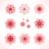 kwiat wiosna Fotografia Stock