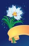 kwiat wiosna ilustracja wektor