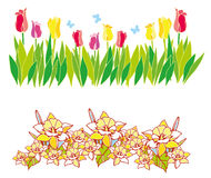 kwiat wiosna Obraz Stock