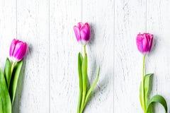 Kwiat wiosny tulipanów odgórny widok na drewnianym tła mockup Zdjęcia Royalty Free